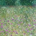 Priairie Cone Flowers by Troy Thomas
