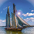 Pride Of Baltimore 3 by Kathryn Strick