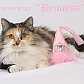 Princess by Kimber  Butler