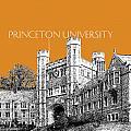 Princeton University - Dark Orange by DB Artist