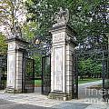 Princeton University Main Gate by Olivier Le Queinec