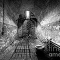 Prison Cell Black And White by Michael Ver Sprill