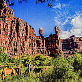 Private Home Canyon Dechelly by Bob and Nadine Johnston