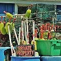 Private Property by Chuck  Hicks