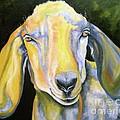 Prize Nubian Goat by Susan A Becker
