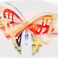 Profound Thought Butterfly by Catherine Lott
