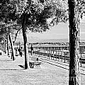 Promenade by David Fabian