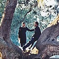 Proposing In A Tree by Michelle Powell
