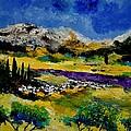 Provence 452121 by Pol Ledent