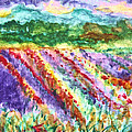 Provence France Field Of Flowers by Stanley Morganstein