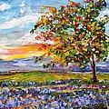Provence Lavender Fields by Karen Tarlton