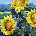 Provence Sunflower Trio by Diane McClary