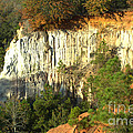 Providence Canyon State Park by Donna Brown