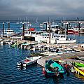 Provincetown Piers by Zina Zinchik