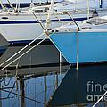 Prows Of Boats by Silvia Di Falco