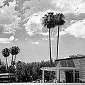 Ps City Hall Front Bw Palm Springs by William Dey