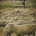 Psalm 100 3 by Amy Medina