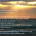 Psalm 23 Beach Sunset by Dan Sproul