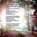 Psalm 23 by Diannah Lynch