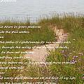 Psalm 23 Path  by Dan Sproul