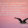 Psalm With Pelican And Pink Sky by Carol Groenen
