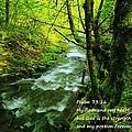Psalms 73-26 by Jeff Swan