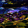 Psychadelic Aerial View by Cathy Anderson