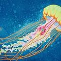 Psychadelic Jelly by Jeff Lucas