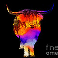 Psychedelic Bovine by Pixel Chimp