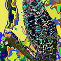 Psychedelic Owl by Norman Johnson
