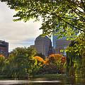 Public Garden Skyline by Joann Vitali