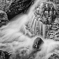 Puddle On The Rock Bw by Mitch Johanson