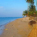 Puerto Rico Beach by Stephen Anderson
