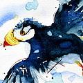 Puffin Flight by Dawn Derman