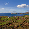 Puffin Island From The Skelligs Ring by Panoramic Images