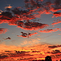 Puffy Pink Clouds by Catie Canetti