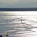 Puget Sound 2014 by Carol  Eliassen