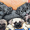 Pugs Party Of Five by Kim Niles