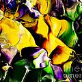 Botanical # 1211 by Antonia Lazaki
