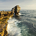 Pulpit Rock In Dorset by Matthew Gibson