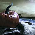 Pumpkin At Sunset by Amanda Elwell