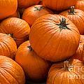 Pumpkin Background by Mariusz Blach