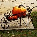 Pumpkin Barrow by Rodney Lee Williams
