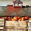 Pumpkin Crates Barn  by Beth Ferris Sale