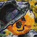 Pumpkin Face Photo Art 05 by Thomas Woolworth