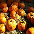 Pumpkin Harvest by Frank Wilson