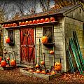 Pumpkin House by Craig Incardone