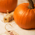 Pumpkin Label by Amanda Elwell