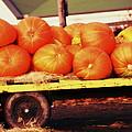 Pumpkin Load by Rodney Lee Williams