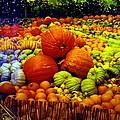 Pumpkin Love by Seaon Ducote